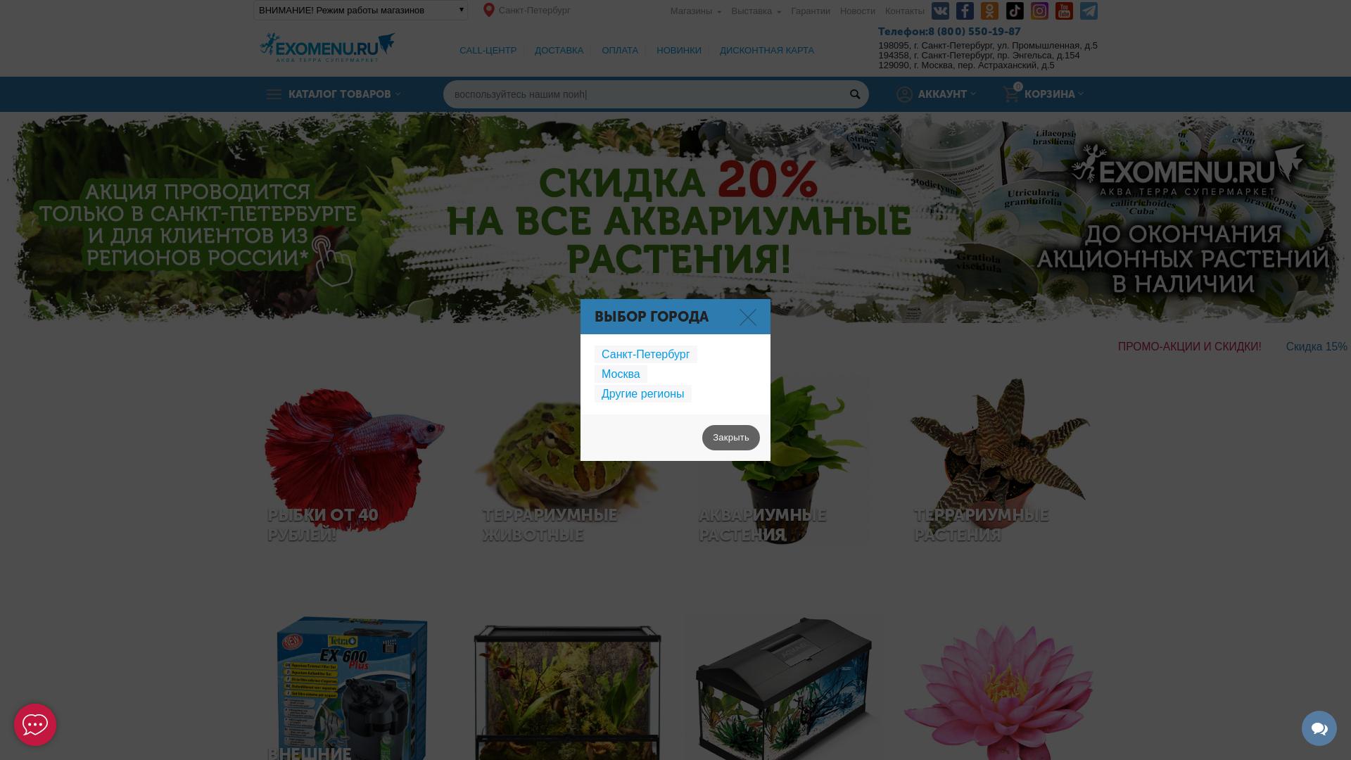 Exomenu.ru website
