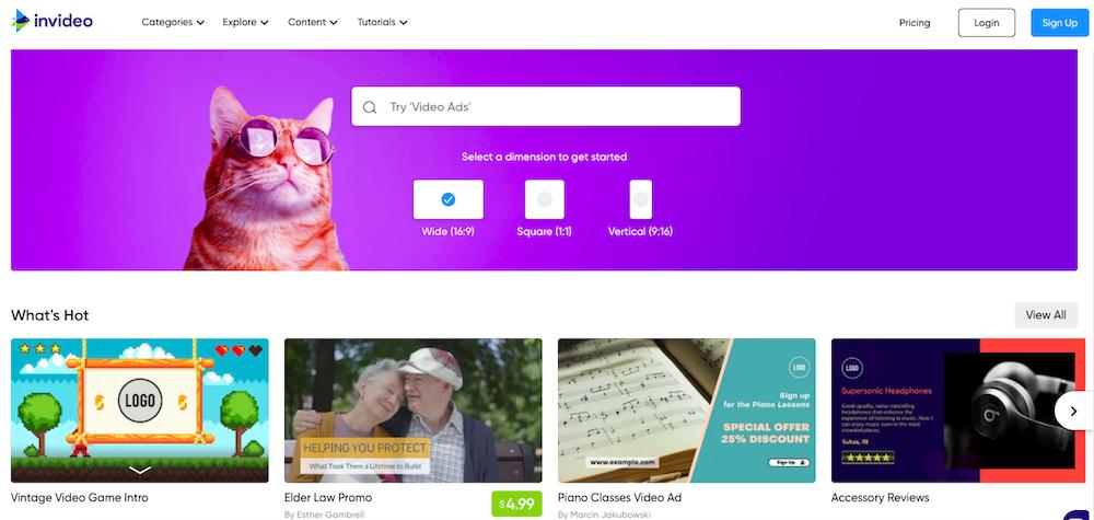 InVideo website